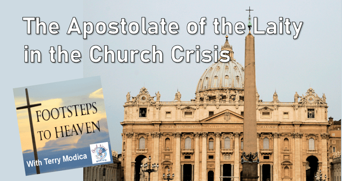 The Apostolate of the Laity in the Church Crisis