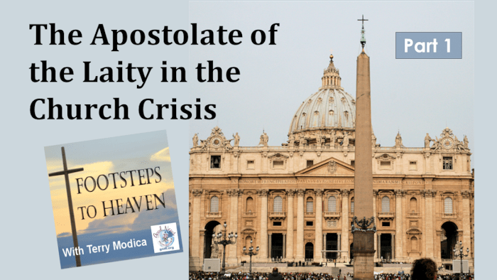 The Apostolate of the Laity in the Church Crisis - Part 1