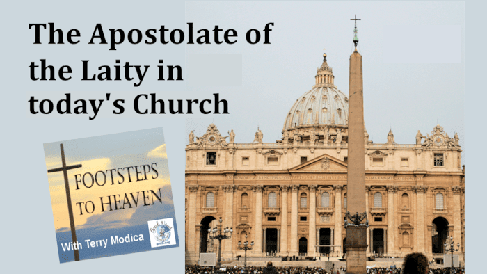 The Apostolate of the Laity